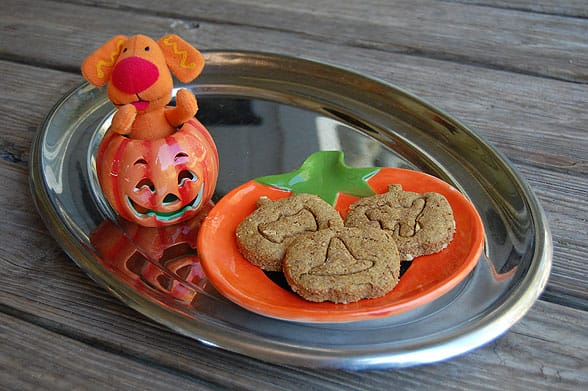pumpkin dog treat recipe