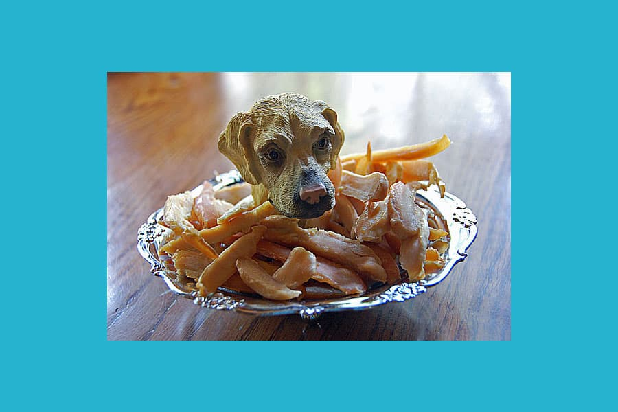 Recipe: Chicken Jerky for Dogs