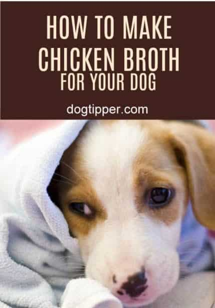how to make chicken broth for your dog
